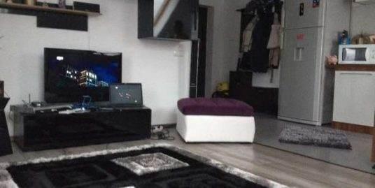 169173-Apartament  de vanzare, 2 cam, Manastur