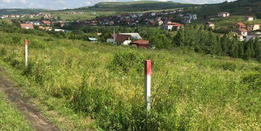 181550-Teren de vanzare, Valea Chintaului, Cluj