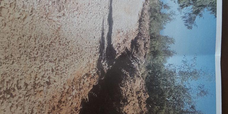 teren 2 Belis